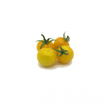 Pomodorino pepita