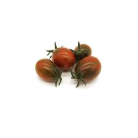 KIT coltivazione Pomodorino Tigro per Linfa Pro
